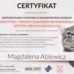 Diagnostyka i terapia zaburzeń kotów niewychodzących